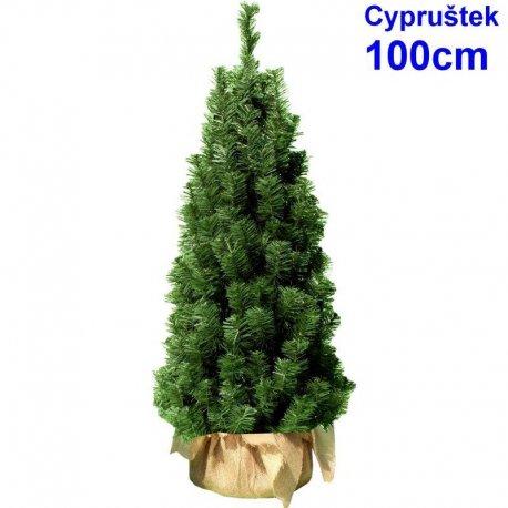 Cypruštek 100 cm