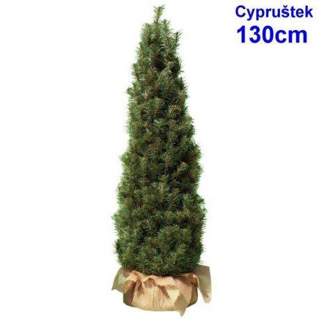 Cypruštek 130 cm